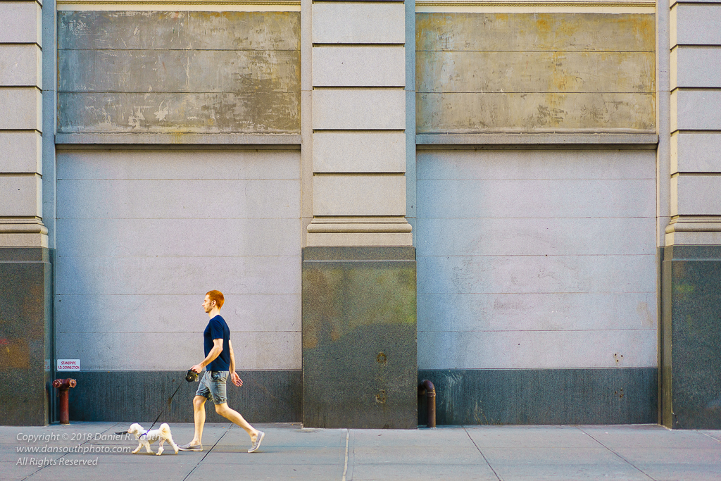 a photo of a Red-Haired Man Walking White Dog by Daniel South