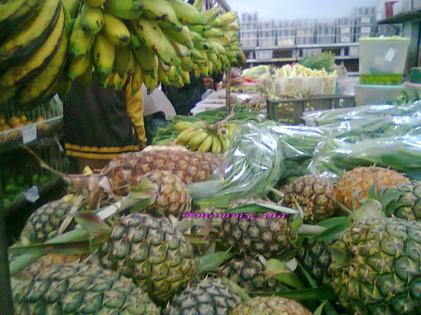 sehat dengan buah lokal, jambu biji, guava crystal, sunpride
