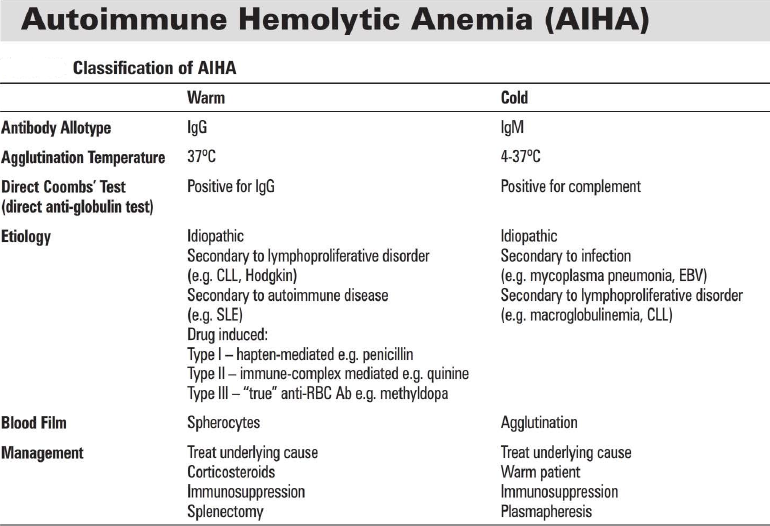 autoimmune disorders hemolytic anemia Introduction autoimmune hemolytic anemia (aiha) due to the presence of warm agglutinins is almost always due to the presence of igg antibodies that react with protein antigens on the red blood cell (rbc) surface at body temperature.