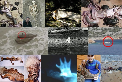 Efsanevi Deniz Yaratığı : Denizkızı Gerçek Mi?