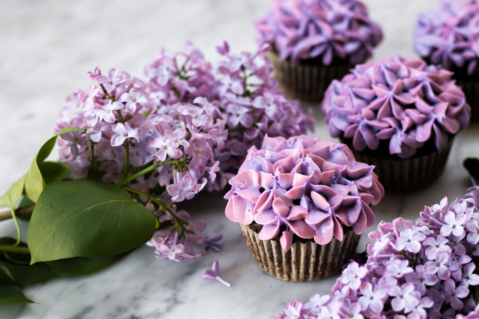 Small batch lilac chocolate cupcakes constellation inspiration as i am writing this the honeyed scent of lilac flowers leftover from these cupcakes perfume the room the sun is hitting my translucent lace curtains izmirmasajfo