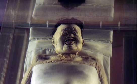 mayat shinzui