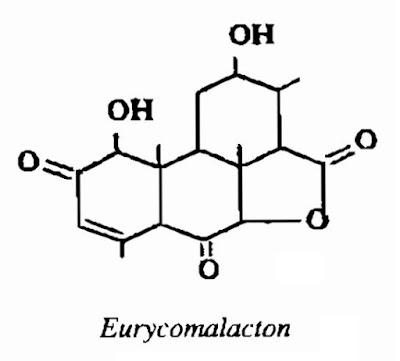 Thành phần hóa học Bách Bệnh - Eurycoma longifolia - Nguyên liệu làm thuốc Chữa Bệnh Tiêu Hóa