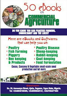E book on  how to start commercial agriculture in Nigeria