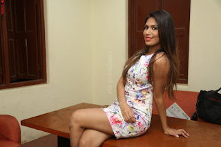 Nishi Ganda stunning cute in Flower Print short dress at Tick Tack Movie Press Meet March 2017 019.JPG