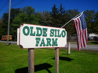 The Olde Silo Farm, Free Shell Bean and Corn Stalk Give Away--One Of My Favorite Local Businesses!