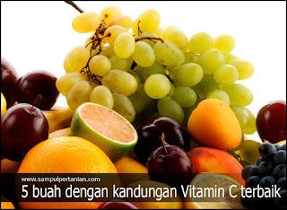 5 buah dengan kandungan Vitamin C terbaik
