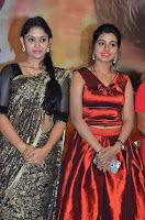 Pichuva Kaththi Tamil Movie Audio Launch Stills  0028.jpg