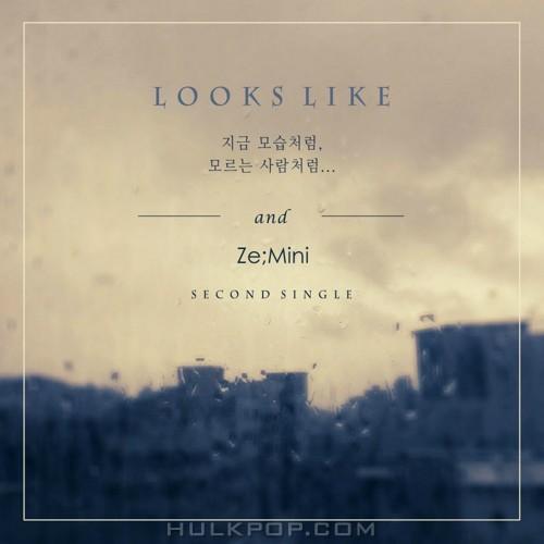 ZEMINI – Looks Like – Single