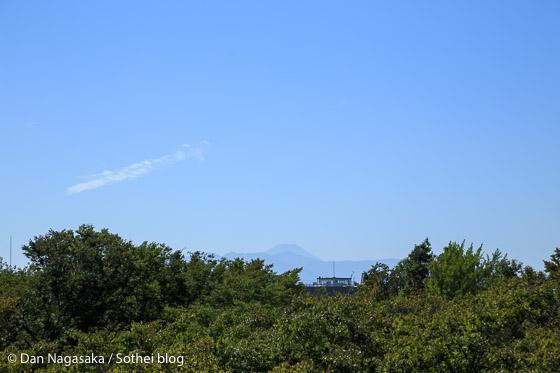 枡形展望台から見える富士山