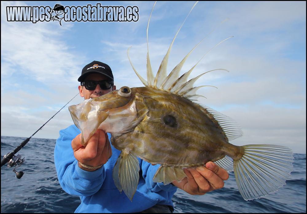 La pesca nel polacco yuryev