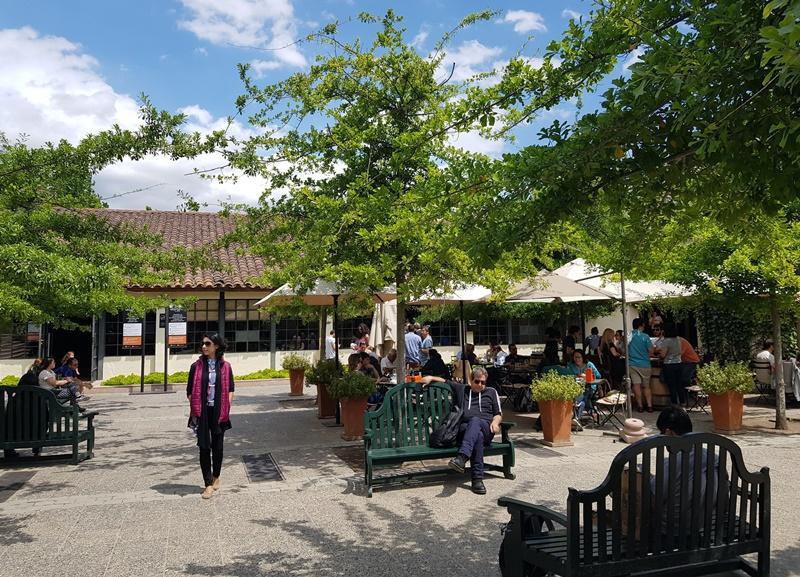 Tour a vinícola Concha y Toro, tudo que você precisa saber