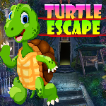 Games4King Turtle Escape