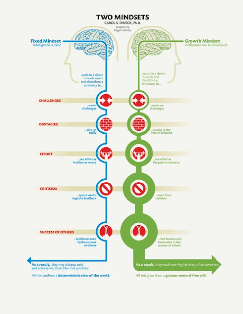 rotana ty learning growth mindset professional development