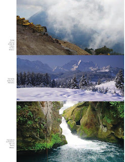 Apoyo Primaria Ciencias Naturales 4to Grado Bloque II Tema 3 Estabilidad del ecosistema y acciones para su mantenimiento