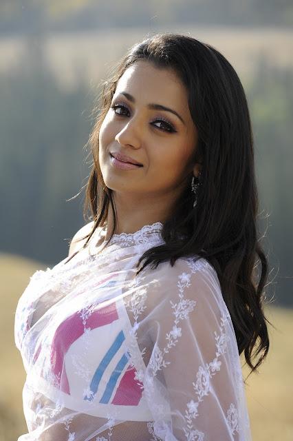 Trisha krishnan hot deep navel show in saree stills HD