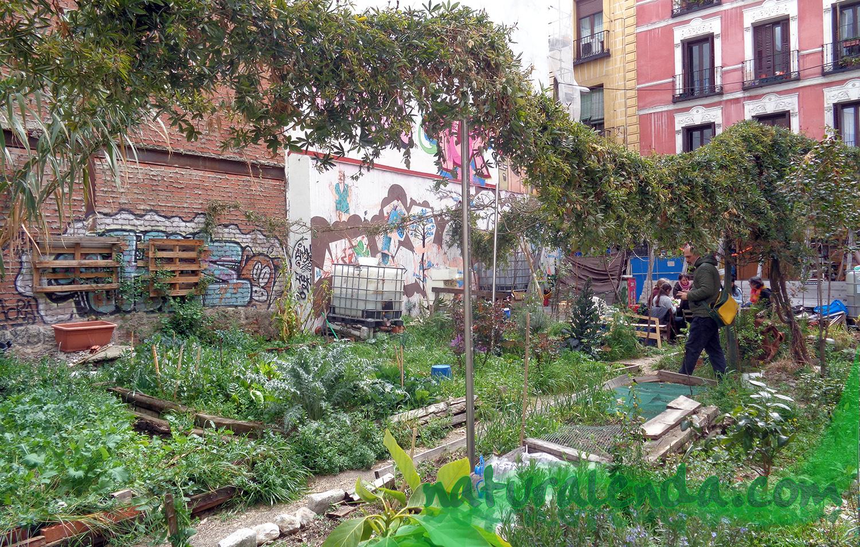 el jardin maravillas
