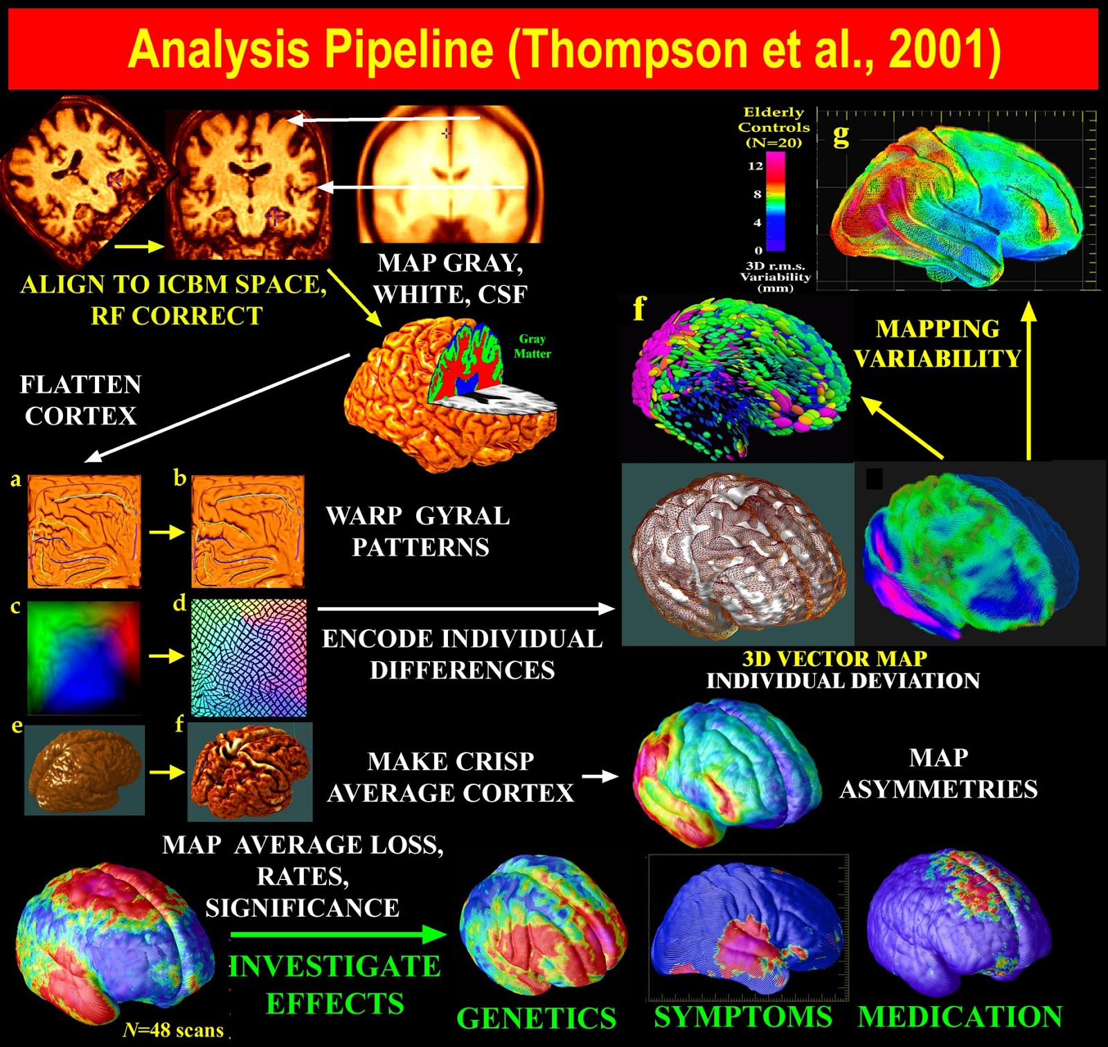 Brain mapping; Brain Electrical Activity Mapping ...