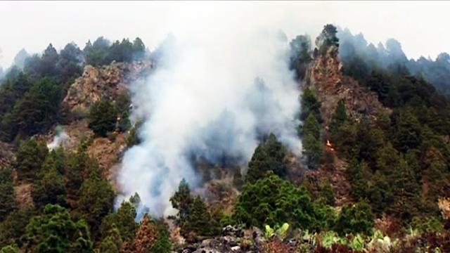Incendio La Palma avanza hacia El Paso La Unidad Militar de Emergencias se suma a la lucha contra el fuego en La Palma