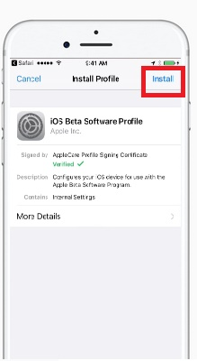 http://www.73abdel.com/2017/06/install-ios-11-beta-without-developer-account-and-without-computer.html