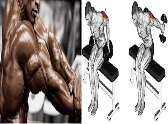 5 Exercises to Hit All 3 Tricep Heads and Fill Your T-Shirt Sleeves