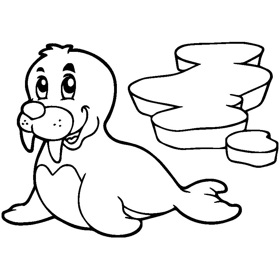 Mewarnai Gambar Singa Laut Aneka Mewarnai Gambar