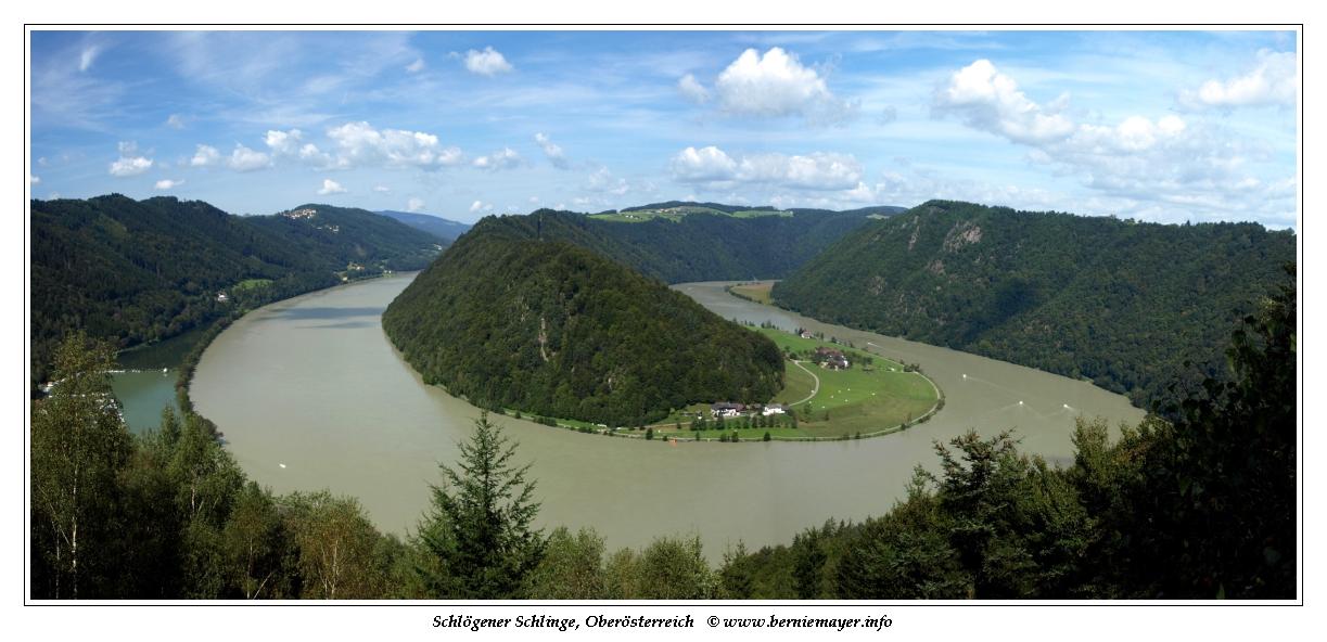 Donauschlinge Schlögen