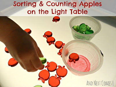 Sorting and counting apples on the light table from And Next Comes L