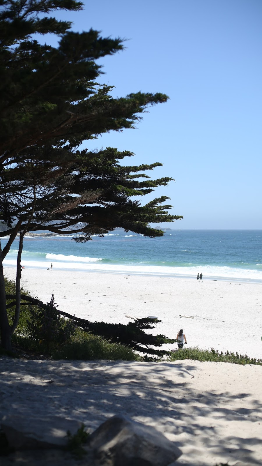 carmel by the sea beach