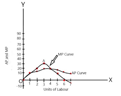 AP-and-MP-relationship