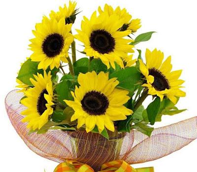 30 bó hoa sinh nhật đẹp tặng bạn Ý NGHĨA 12
