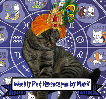 February 23-March 1 Pet Horoscopes