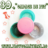 http://www.provocariverzi.ro/2016/01/tema-39-capace-de-pet.html