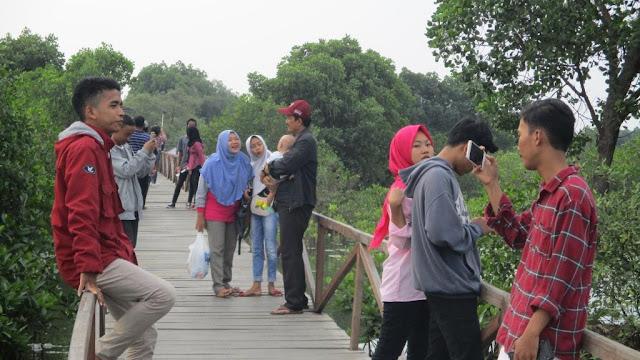 Hutan Mangrove Bekasi