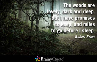 deep thoughts: the woods are lovely, dark and deep.