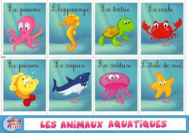 Resultado de imagen para animaux aquatiques