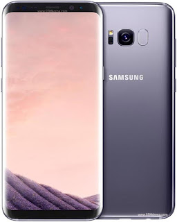 Samsung Galaxy S8 vs S8 Plus