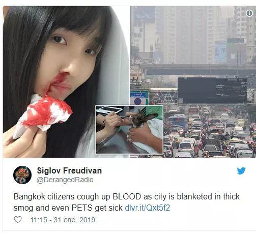 FOTOS: neblina provoca que a ciudadanos y animales de tailandia les salgan sangre de la nariz.