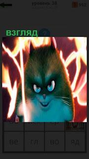 на фоне огня необычный взгляд странного зверька