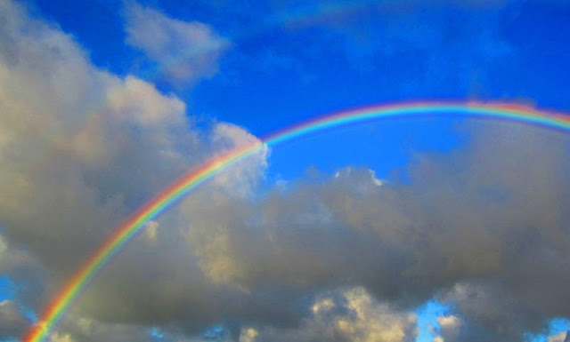 What Are The Colors Of The Rainbow Ency123
