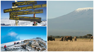 Mount Kilimanjaro is the highest mountain in Africa, the highest freestanding mountain in the world and one of the Seven Summits.