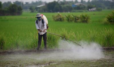 Jenis dan Sumber Pencemaran Tanah