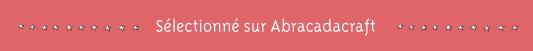http://www.abracadacraft.com/billet-de-blog/bonnet-sea-monkey-56353