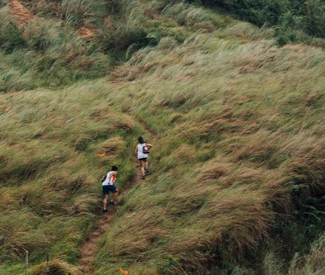 Bravehearts Trail Run