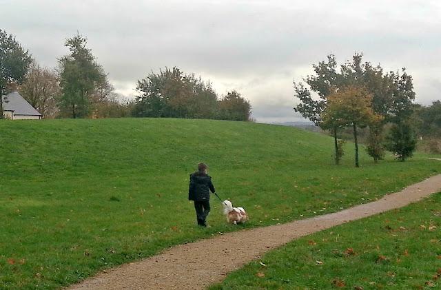 Boy walking a King Charles Spaniel on a lead.