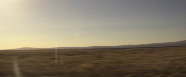 Serpiente de Cascabel imagenes HD