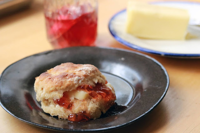 Learn How to Bake Biscuits with Chef Scott Peacock by Lucy Mercer | A Cook and Her Books copyright 2019