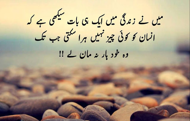 Image result for life quotes in urdu