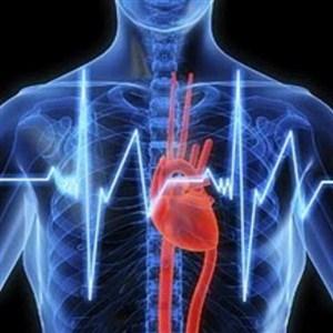 Mencegah Kardiovaskular