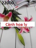 Phu kien hoa pha le o My Dinh 2